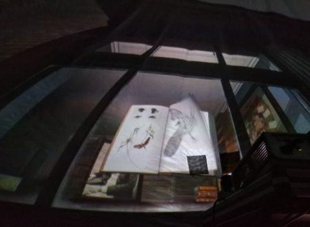 interior cupula (5)
